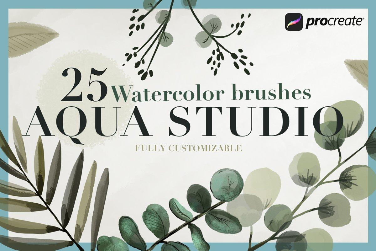 Aqua Studio Watercolor brushes
