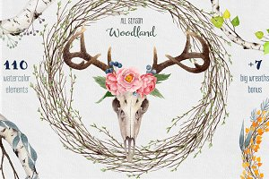 30% OFF Watercolor Woodland