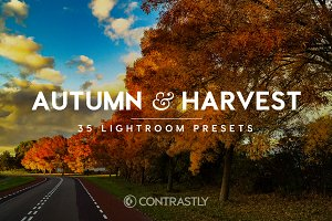 Autumn & Harvest LR Presets Vol.1