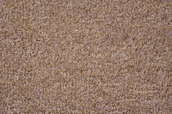 Light Brown Carpet Texture Pre Designed Photoshop Graphics Creative Market
