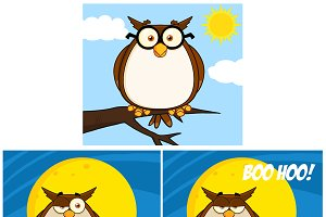 Funny Owl Character Collection - 4