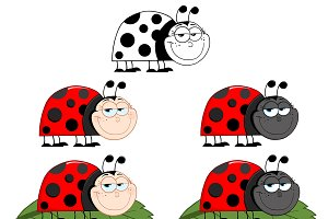 Ladybug Character Collection - 1