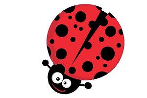 Ladybug Character Collection - 4