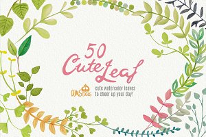 50 Cute Leaves
