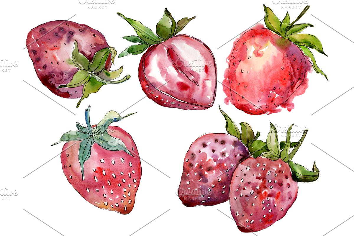 "Strawberry cultivar ""Malvina"" in Illustrations - product preview 8"