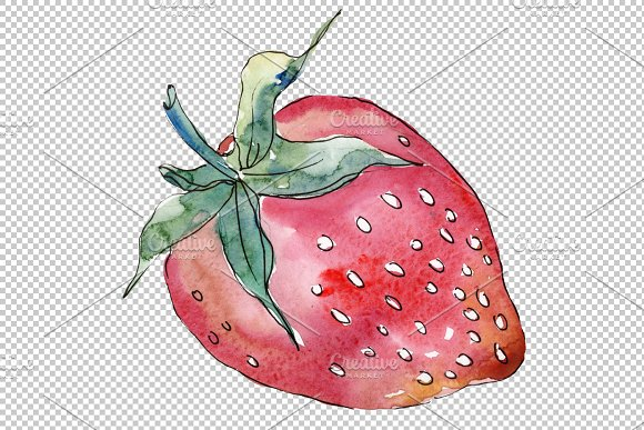 "Strawberry cultivar ""Malvina"" in Illustrations - product preview 4"