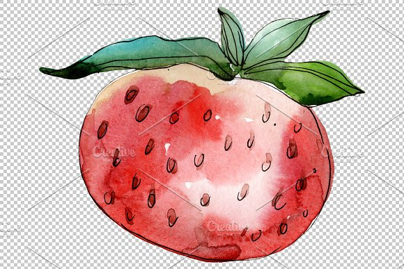 Strawberry Queen Elizabeth watercor in Illustrations - product preview 1
