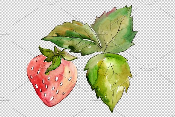 Strawberry Marmolada watercolor png in Illustrations - product preview 4