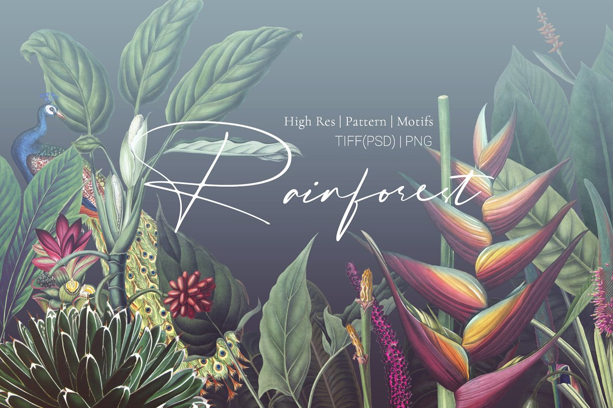 Rainforest Tropical Pattern set! in Patterns - product preview 8