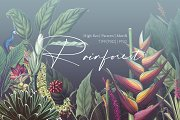 Rainforest Tropical Pattern set!