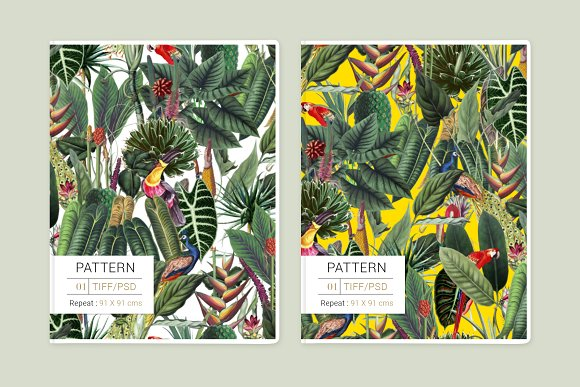 Rainforest Tropical Pattern set! in Patterns - product preview 3