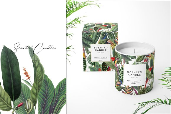 Rainforest Tropical Pattern set! in Patterns - product preview 5
