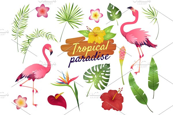 614126dfc8 60% OFF Tropical Paradise Design Kit ~ Illustrations ~ Creative Market
