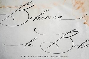 La Bohemia // Fine Art Font SALE