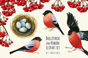 Bullfinch and Rowan clipart