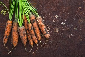 Bunch of fresh garden carrots