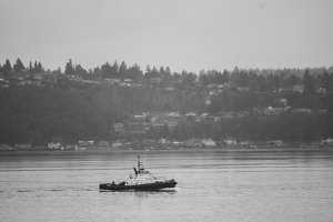 Tug Boat in Puget Sound