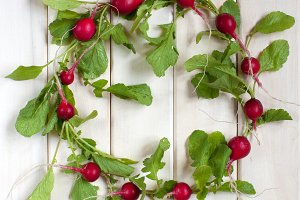 Wreath of fresh radishes