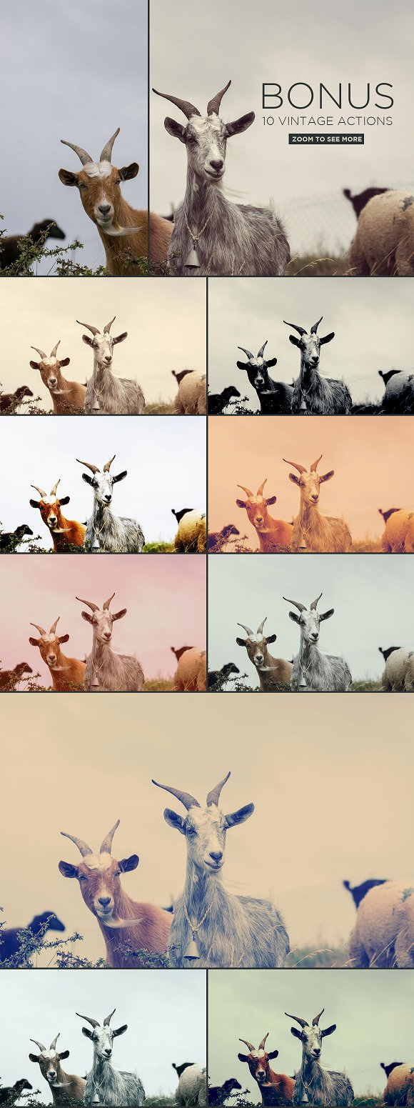 300 Images Pack | Extended Licence in Graphics - product preview 1