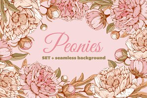 ✿ Peonies. Vector set ✿