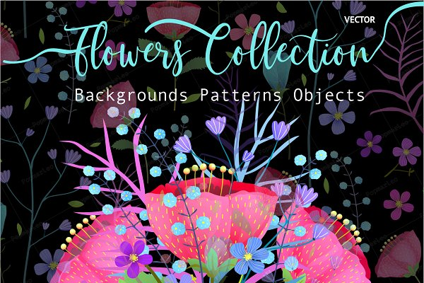 Flowers Blooming Graphic Collection