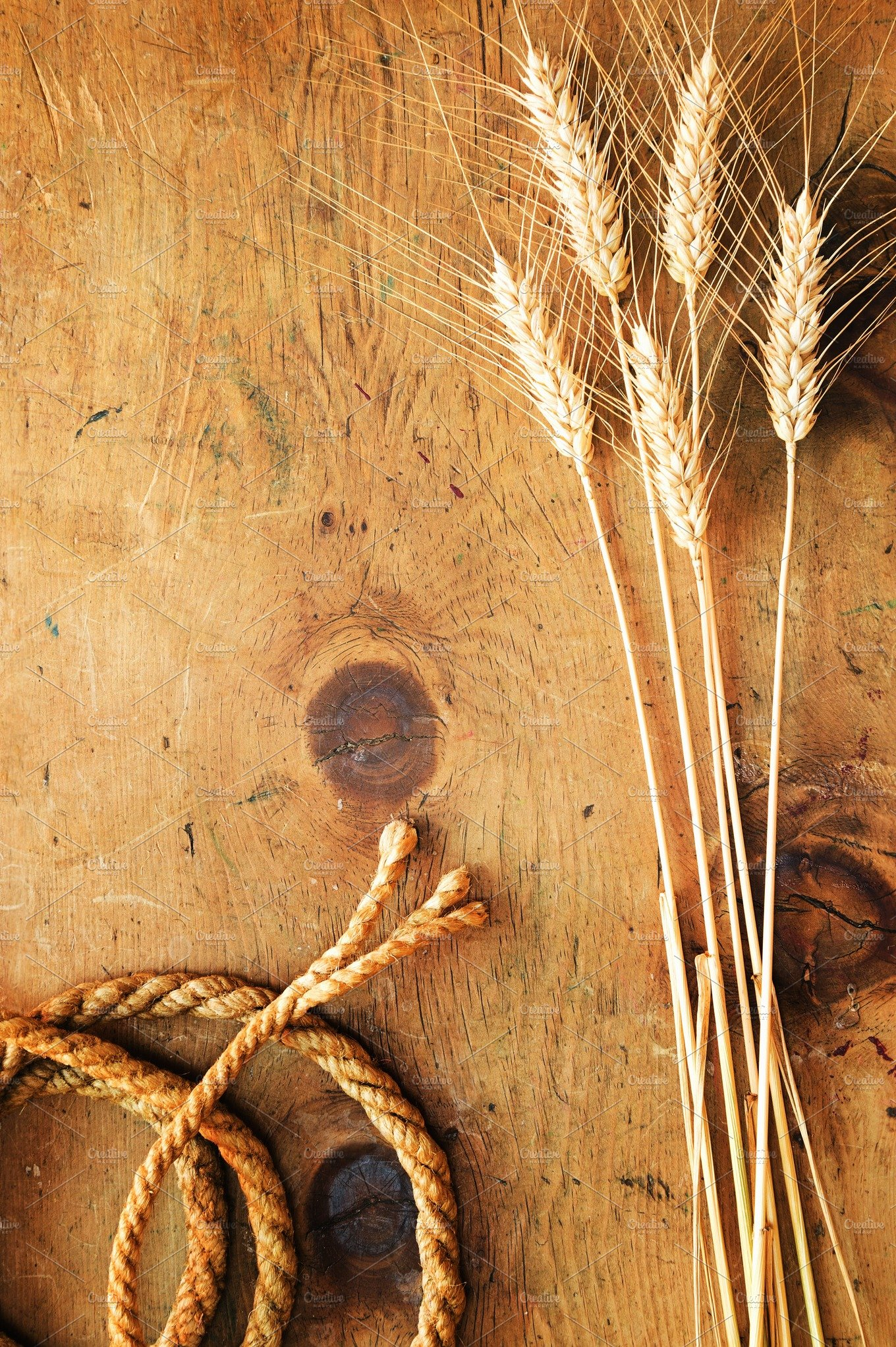 Vintage Wheat And Rope 2 Industrial Photos Creative Market