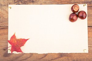 Autumn mockup with maple leaves