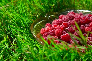 ripe raspberry in a glass dish