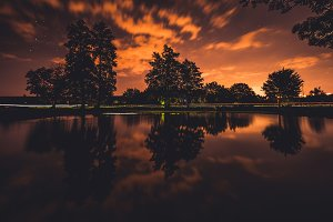 Dramatic reflection of the trees