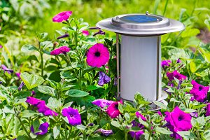 A solar-powered garden lamp.