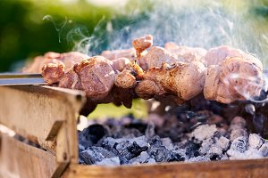 Barbecue skewers with meat