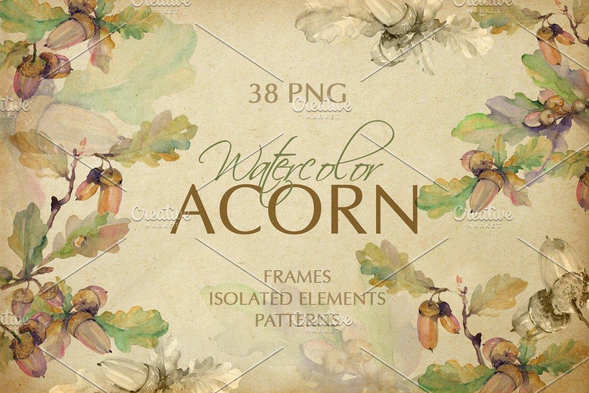 Скачать [Creativemarket] Acorn Watercolor png (2019), Отзывы Складчик » Архив Складчин