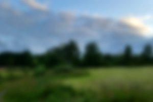 Blurred Nature Landscape 2