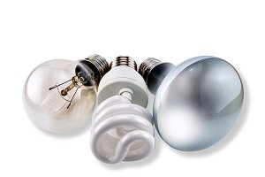 Set of different bulbs