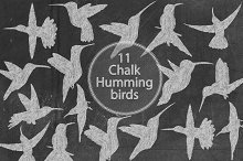 Chalk Hummingbird