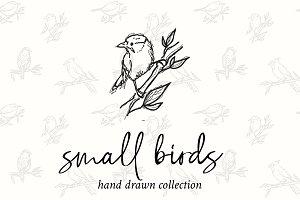 Small Birds Hand Drawn Illustrations