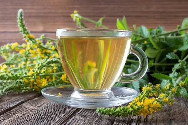 A cup of agrimony tea with blooming | High-Quality Health Stock Photos ~  Creative Market