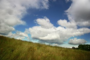 Clouds Over Grass (Photo)