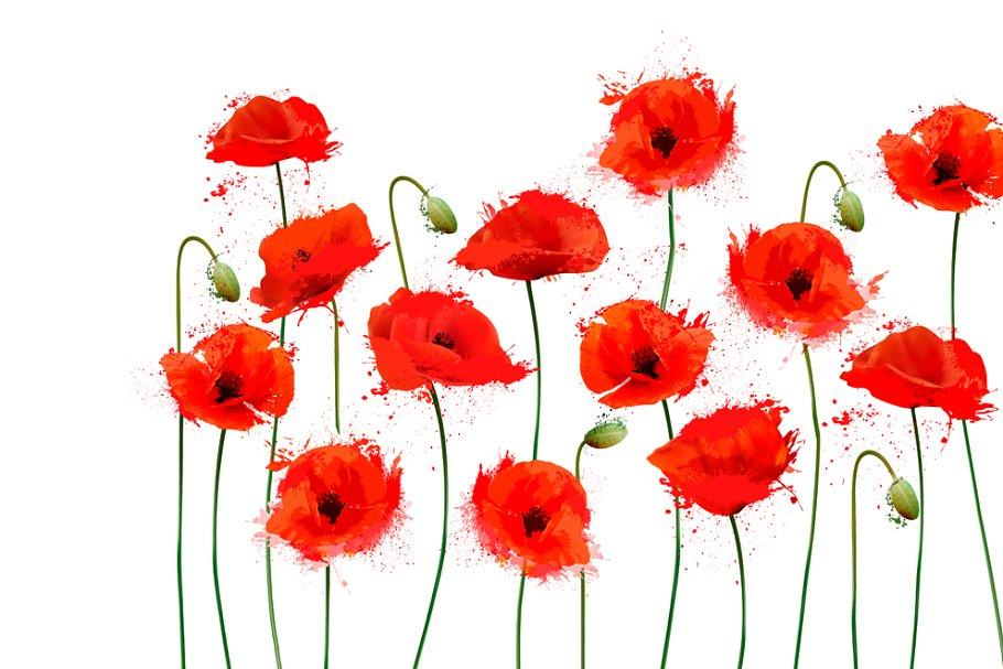 Red Poppy Flowers Background Vector Custom Designed