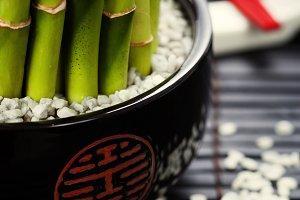 Chopsticks and  bamboo plant