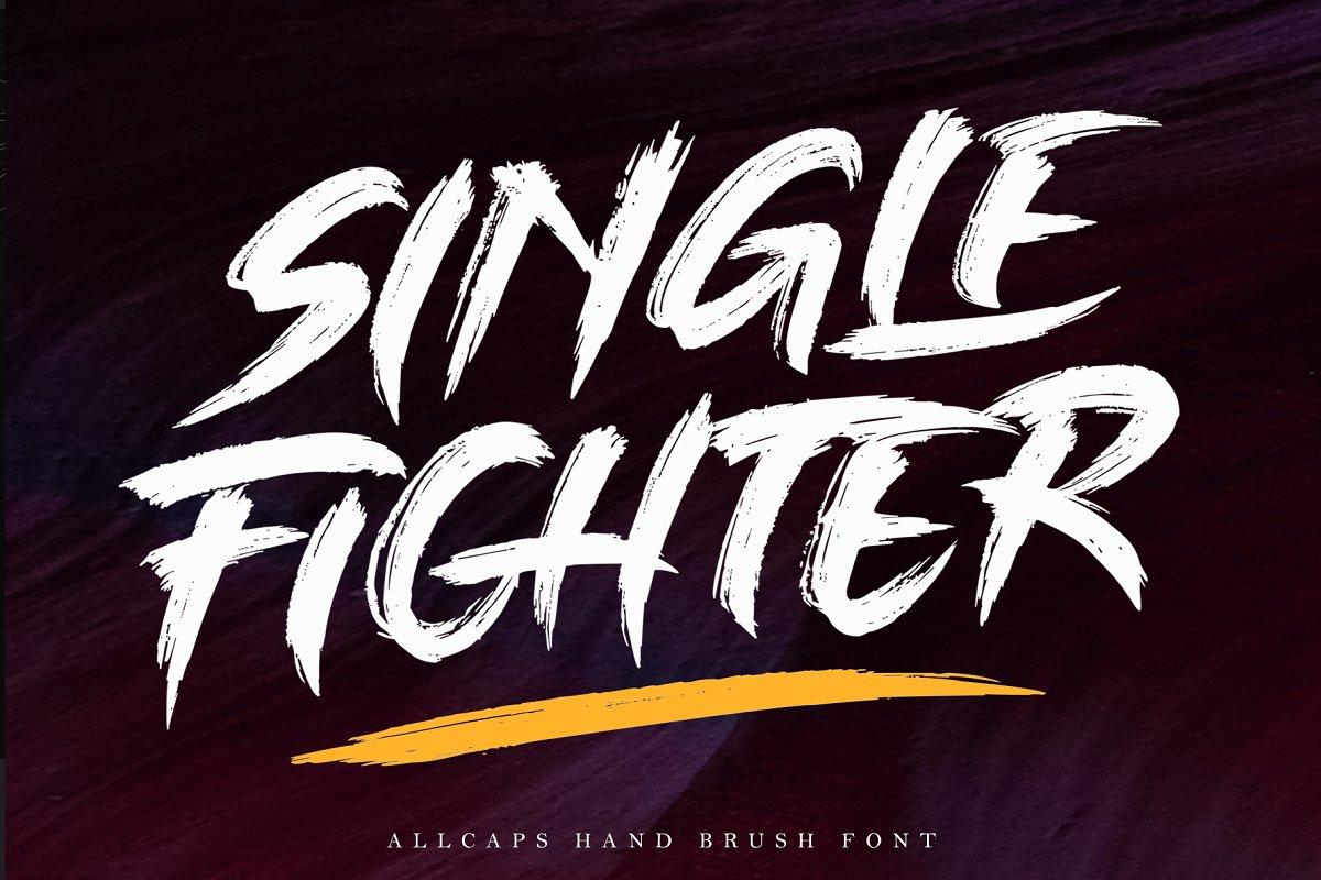 SINGLE FIGHTER / Brush Font