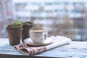 Rainy day, cup of tea near window