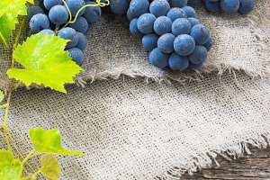 Cluster of Blue Grapes on Old Wooden Background