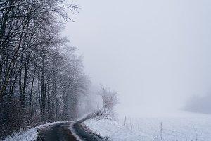 Road through snowy Landscape