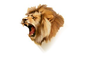 Roaring lion icon