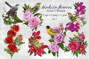 World of birds and flowers Part1