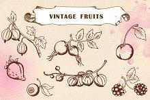 Set of hand drawn vintage fruits