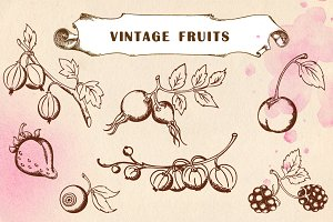 Set of hand drawn vintage fruits