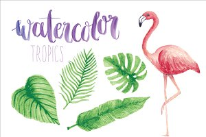 watercolor tropics/flamingo vector