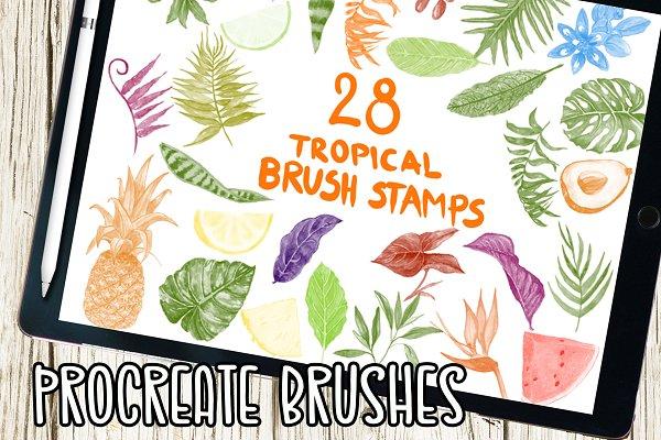Procreate Watercolor Botanical Kit ~ Procreate Brushes ~ Creative Market